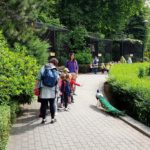 Embassy International School - Nursery & Reception Zoo trip May 2018 013