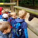 Embassy International School - Nursery & Reception Zoo trip May 2018 021