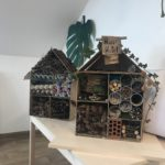 Embassy International School: Bug hotels judging00005