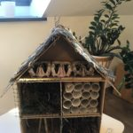 Embassy International School: Bug hotels judging00019