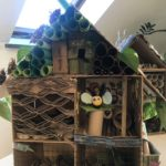 Embassy International School: Bug hotels judging00020