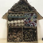Embassy International School: Bug hotels judging00021