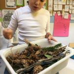 Embassy International School: Bug hotels yr 600006