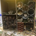 Embassy International School: Bug hotels yr 600009