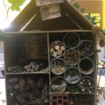 Embassy International School: Bug hotels yr 600013