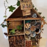 Embassy International School: Bug hotels00005