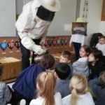 Embassy International School: Yr 1 Bees and insects00002