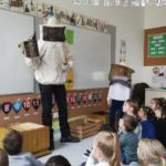 Embassy International School: Yr 1 Bees and insects00020