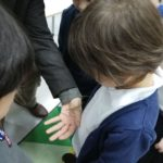 Embassy International School: Yr 1 Bees and insects00026