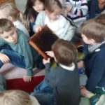 Embassy International School: Yr 1 Bees and insects00030