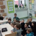 Embassy International School: Yr 1 Bees and insects00035